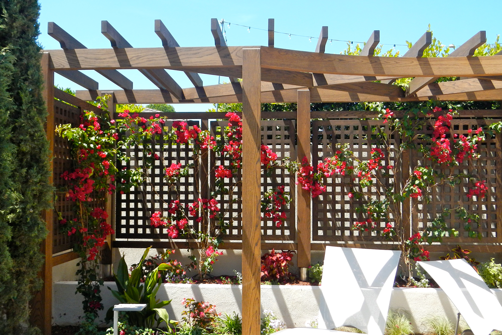 custom made wooden pergola